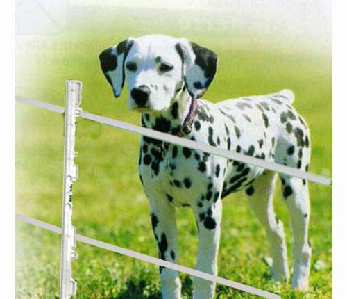 Recinzione completa a bassa emissione elettrica per cani for Recinzione elettrica per cavalli