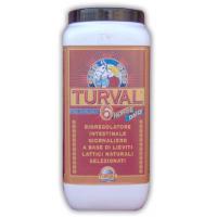 TURVAL 6 Bioregolatore Intestinale per cavalli da Kg1,25
