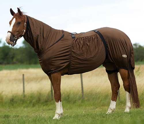 coperta cavallo anti eczema contro insetti - myselleria